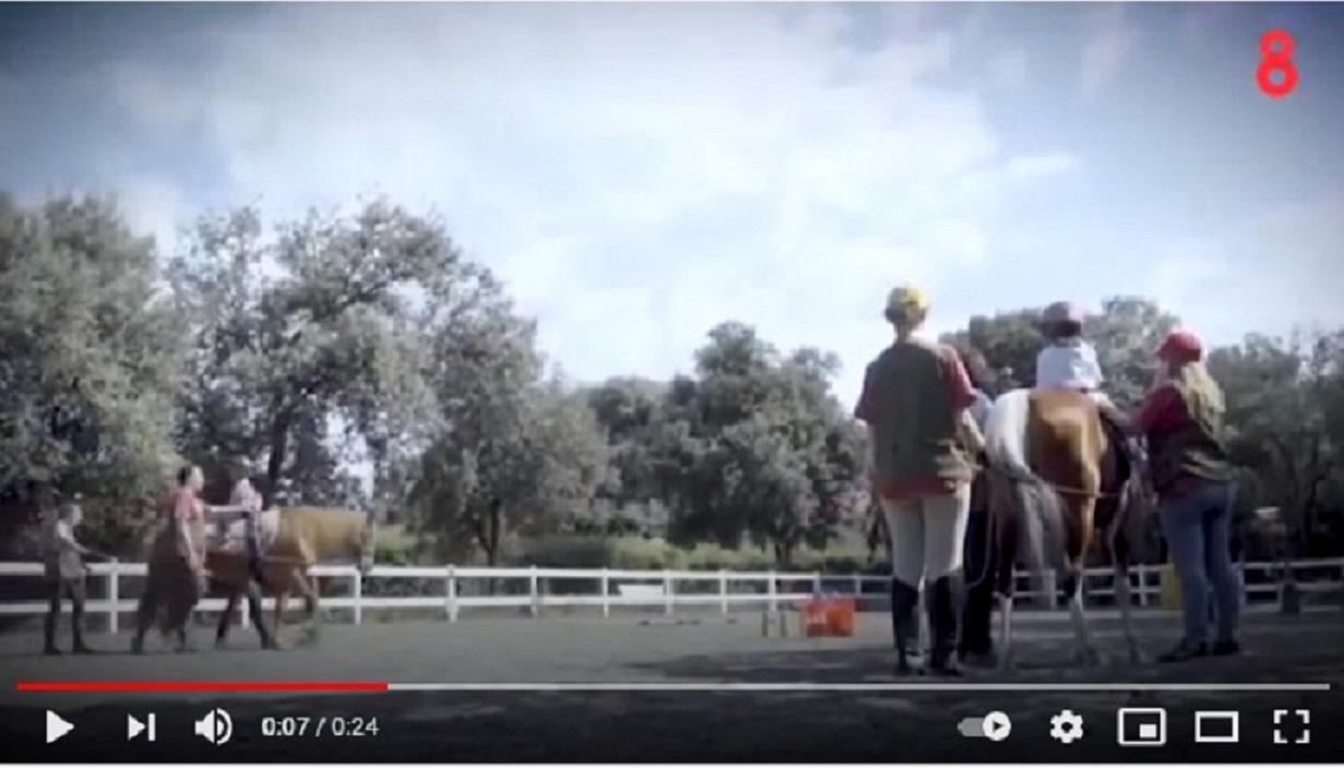 Fundació Teràpia a Cavall en 8Tv -07/11/2018 gabinete de prensa
